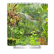 Westmoreland Jamaica 3 Shower Curtain
