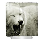 Yawning Shower Curtain