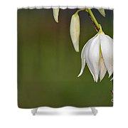 Yucca Blossom Shower Curtain