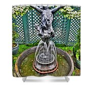 001 Fountain Buffalo Botanical Gardens Series Shower Curtain