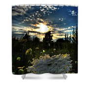 001 Life Is Beautiful Shower Curtain