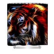 0012 Siberian Tiger Shower Curtain