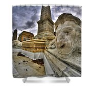 0016 Lions At The Square Shower Curtain