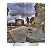 0017 Lions At The Square  Shower Curtain