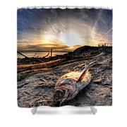 002 After The Ice Melts Erie Basin Marina Series Shower Curtain