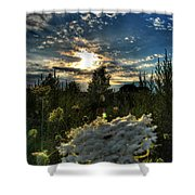 003 Life Is Beautiful Shower Curtain