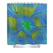004 Abstract Shower Curtain