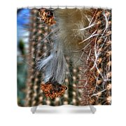 004 For The Cactus Lover In You Buffalo Botanical Gardens Series Shower Curtain