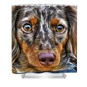 0054 Puppy Dog Eyes Shower Curtain