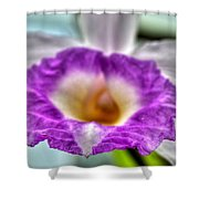 00b Buffalo Botanical Gardens Series Shower Curtain