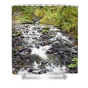 0106 Columbia River Gorge Near Bridal Veil Falls Shower Curtain