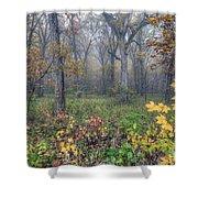 0133 Misty Meadow 2 Shower Curtain