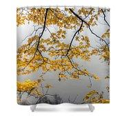 0135 Autumn Gold  Shower Curtain