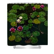 0151-lily -   Expressionist Plein Air Sl Shower Curtain