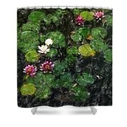 0151-lily -   Light Color Pencil Sl Shower Curtain