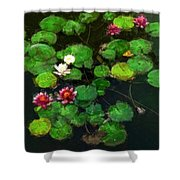 0151-lily -   Oil Stain Sl Shower Curtain
