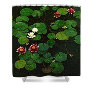 0151-lily -  Colored Photo 1 Shower Curtain