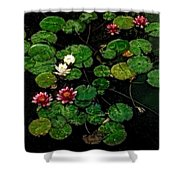 0151-lily -  Watercolor 1 Sl Shower Curtain