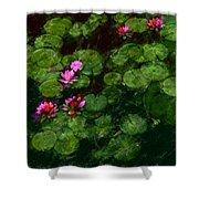 0151-lily - Chalk 1 Sl Shower Curtain