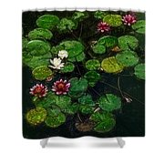 0151-lily - Color Drawing Sl Shower Curtain