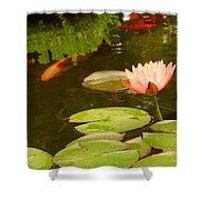 0174 Shower Curtain