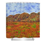 025 Landscape Shower Curtain