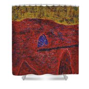 046 Abstract Thought Shower Curtain