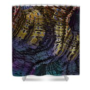 0520 Shower Curtain