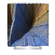 0536 Shower Curtain by I J T Son Of Jesus