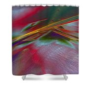 0538 Shower Curtain