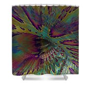 0547 Shower Curtain