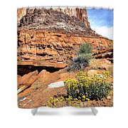0712 Guardian Of Canyonland Shower Curtain