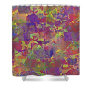 0866 Abstract Thought Shower Curtain