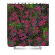 0901 Abstract Thought Shower Curtain