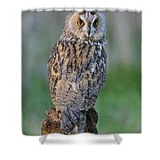 090811p316 Shower Curtain