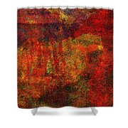 0911 Abstract Thought Shower Curtain