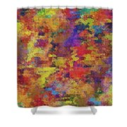 0955 Abstract Thought Shower Curtain