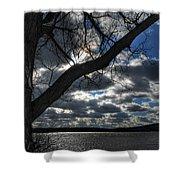 003 Grand Island Bridge Series Shower Curtain