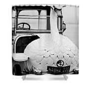 1910 Brooke Swan Car Shower Curtain