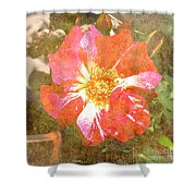 4th Of July Rose Shower Curtain