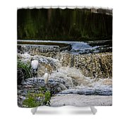 1 500th Of A Second Shower Curtain