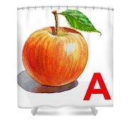 A Art Alphabet For Kids Room Shower Curtain