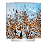 A Delicate World Shower Curtain