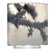 Deep Freeze Shower Curtain