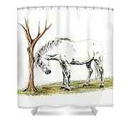 A Good Itch Shower Curtain