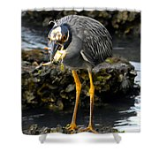 A Great Catch Shower Curtain