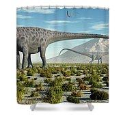 A Herd Of Diplodocus Sauropod Dinosaurs Shower Curtain
