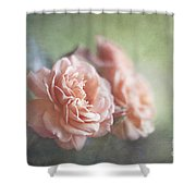 A Moment Of Romance Shower Curtain
