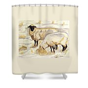 A Peaceful Winter Shower Curtain