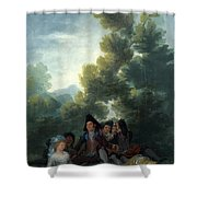 A Picnic Shower Curtain